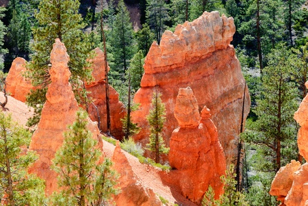 Rock formations called hoodoos, Bryce Canyon NP, Utah, USA photo