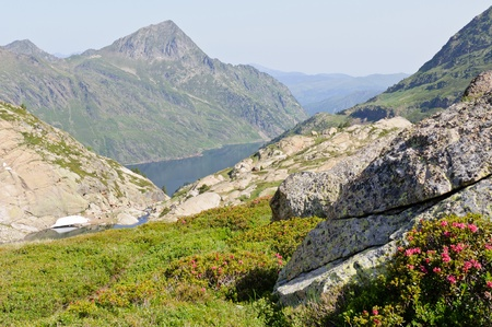 Typical view in Pyrenees mountains at summer Stock Photo