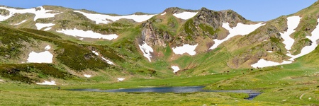 Mountain lake with grazing cows and horses in Pyrenees at summer, Ariege, France