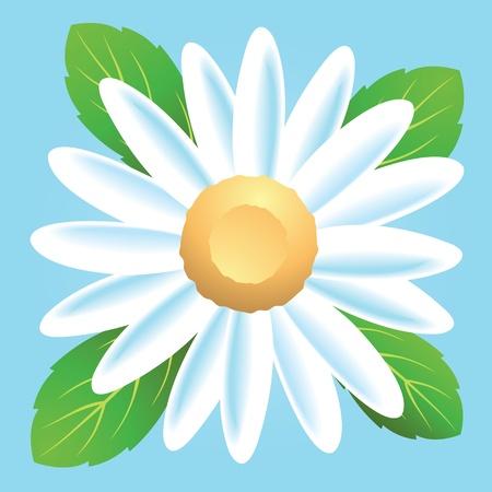 A simple daisy flower icon.