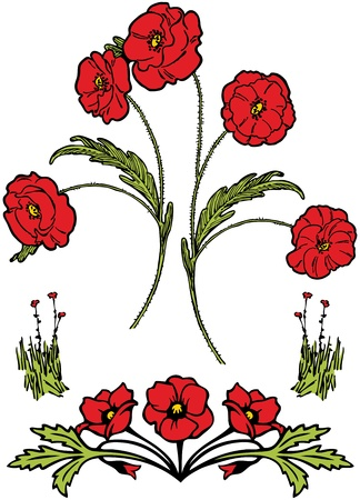 opium poppy: Poppies