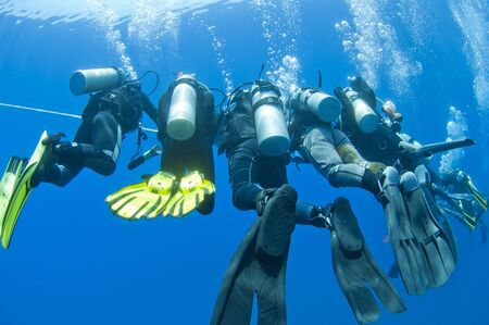 Group of scuba divers decompressing on a rope underwater