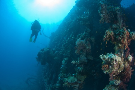 Scuba divers exploring a large shipwreck