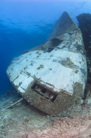 upturned: Upturned bow of a large capsized underwater shipwreck