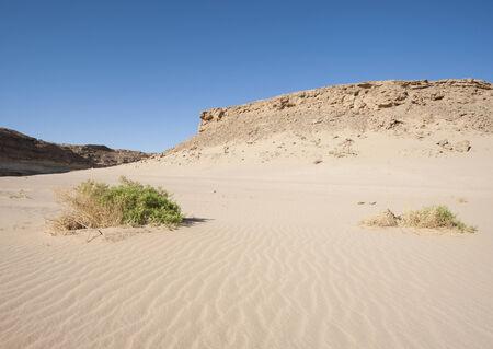 ロッキー エジプト東部砂漠の砂...
