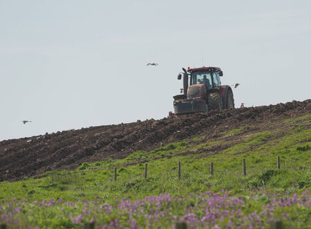 ploughing: Tractor ploughing rural agricultural arable fields in english countryside Editorial