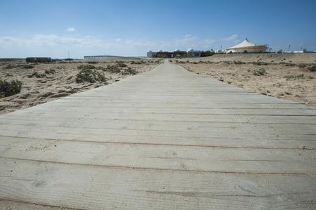 planking: Closeup detail of wooden planking walkway across desert sand dune