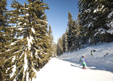 piste: Skiers on a ski slope piste slope going through the trees in alpine resort Stock Photo