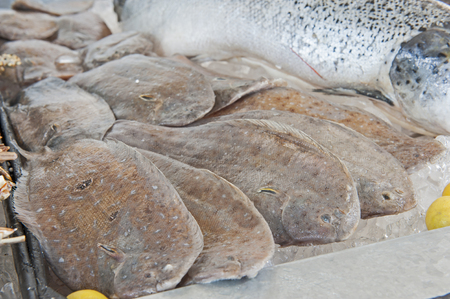 plaice: Collection of fresh plaice seafood on display at a fish restaurant