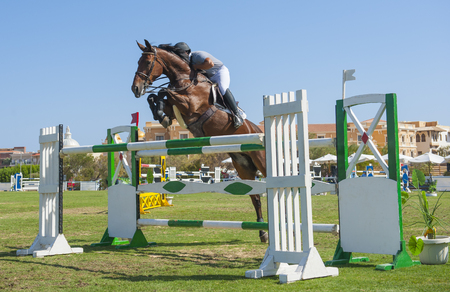 SAHL HASHEESH, EGYPT - OCTOBER 29TH 2016:  Arab Championship Showjumping World Cup Qualifiers on October 29th 2016 in Sahl Hasheesh, Egypt. Riders and horses in action during the main Grand Prix event. Editöryel