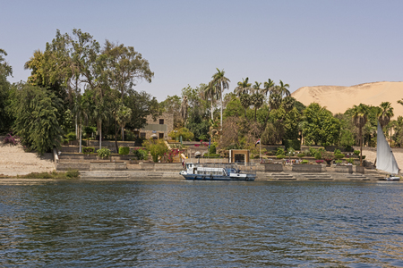 View of trees at tropical botanical gardens on Kitcheners Island at Aswan in Egypt from nile river 스톡 콘텐츠