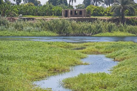 Panoramic landscape rural countryside view of grass field wetlands and small river Banco de Imagens