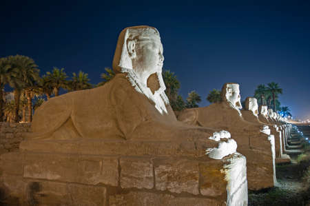 Statues at avenue of sphinxes in ancient egyptian Luxor Temple