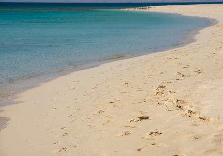 Closeup view across an empty sandy tropical beach shoreline to the open ocean with horizon in distance Banco de Imagens