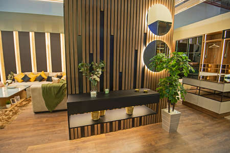 Living room lounge area in luxury apartment show home showing open plan interior design decor furnishing with plants