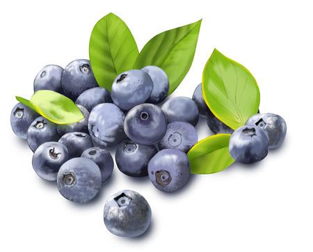 과일이 든 보스 베센 식물