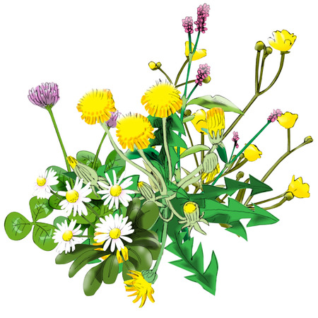 Weed bouquet Illustration
