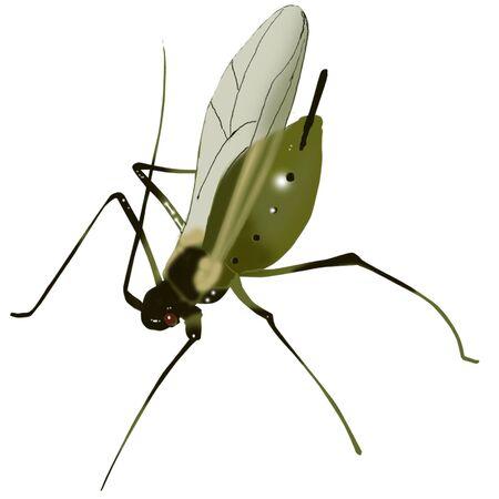 곤충 아이콘