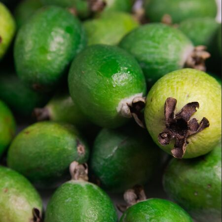 Green ripe feijoa fruit on the table. On top is a pile of fresh ripe feijoa fruit sold in the market.