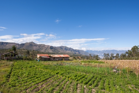 agricultura: Ecuadorian Farm  Finca  on the Road to Saraguro Stock Photo