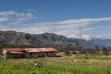 mujer: A finca  farm  on the road to Saraguro, Ecuador, in the Andes Mountains