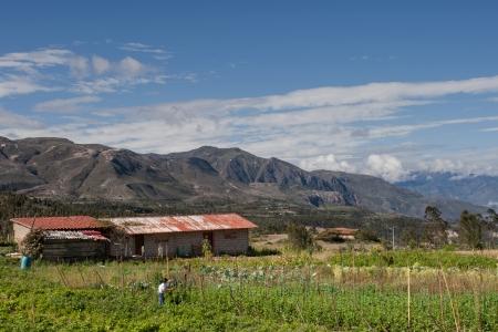 ecuador: A finca  farm  on the road to Saraguro, Ecuador, in the Andes Mountains