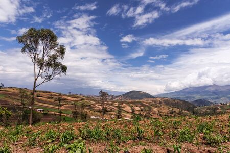 A view of the Andes mountains and farmlands somewhere on the road to Quito from Cuenca in Ecuador. Zdjęcie Seryjne