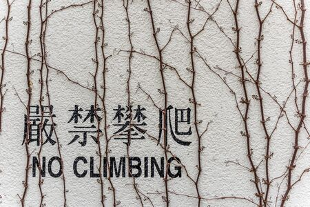 climbing wall: No Climbing English and Chinese word on wall