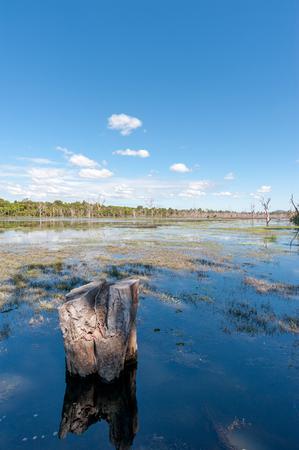 Large lake Baray in Angkor