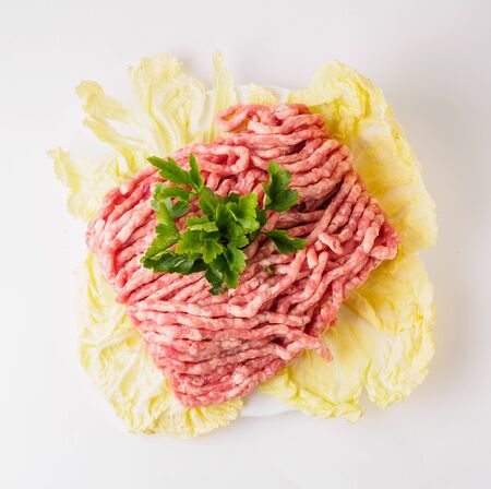 raw forcemeat on leaf
