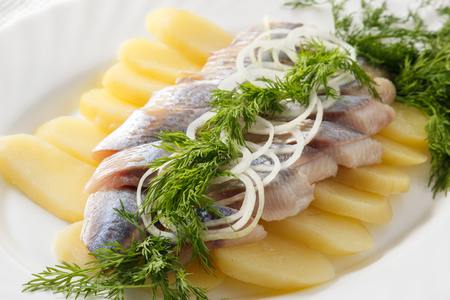 herring fish with onion rings on a white plate. Stock Photo