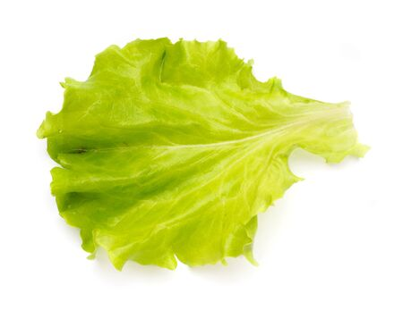 Leaf of salad isolated. on the white background.