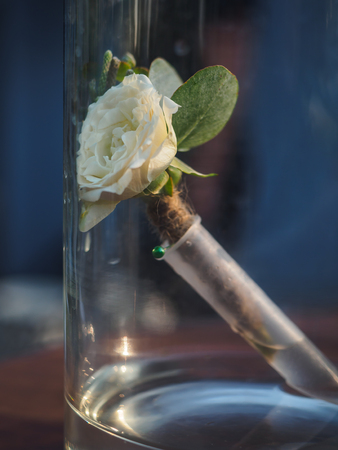 Boutonniere with flower rose in glass bottle. Stock Photo
