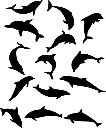 delfin: delfiny silhouette kolekcja   Ilustracja