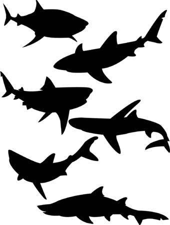 tail fin: colecci�n de silueta de tiburones