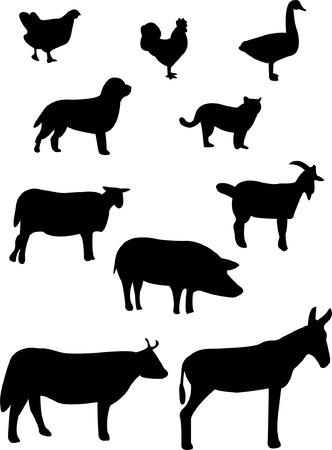 farm animals silhouette   Stock Vector - 7776978