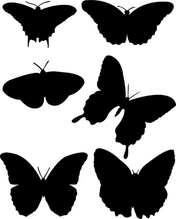 butterfly silhouette collection   Vector