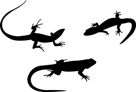 lizards silhouette collection  Stock Vector - 7881821