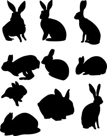 silueta masculina: colecci�n de silueta de conejos  Vectores
