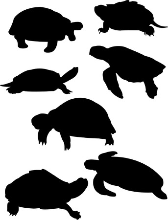 swimming silhouette: illustration of turtles silhouette