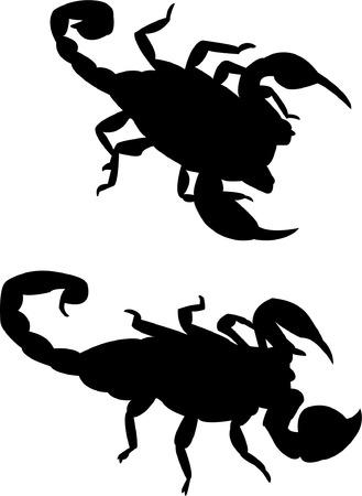 aggression: scorpion silhouette