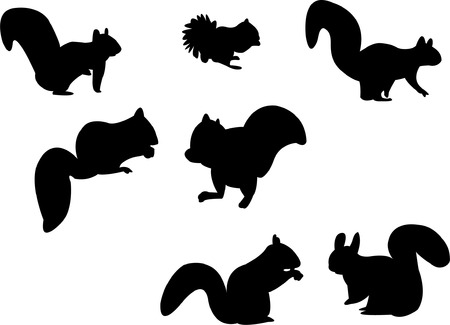 red squirrel: squirrel silhouette Illustration