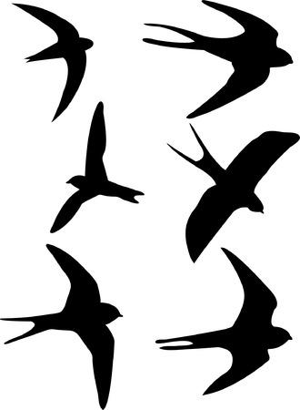 zwaluwen silhouetten  Vector Illustratie