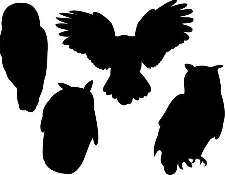 owl collection silhouette  Stock Vector - 8094083