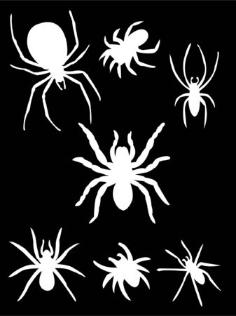 arachnophobia animal bite: collection of spiders on black background silhouette  Illustration