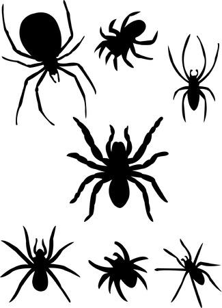 silueta de arañas  Ilustración de vector