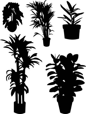 flowers silhouettes Stock Vector - 8154234