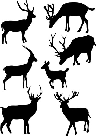 collection of deers   Stock Vector - 8154232