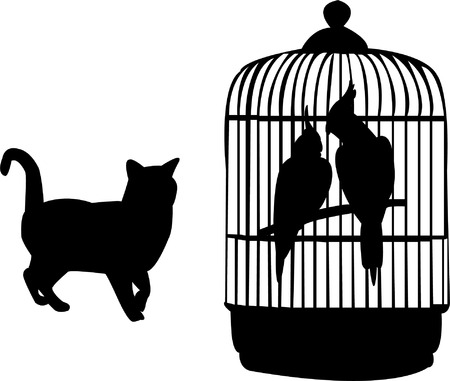 naturalist: parrots and cat silhouette
