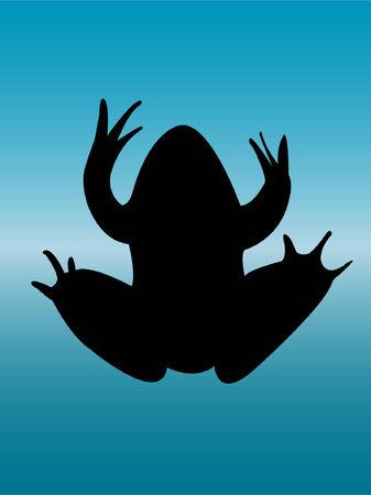 frog silhouette - vector Stock Vector - 8387658
